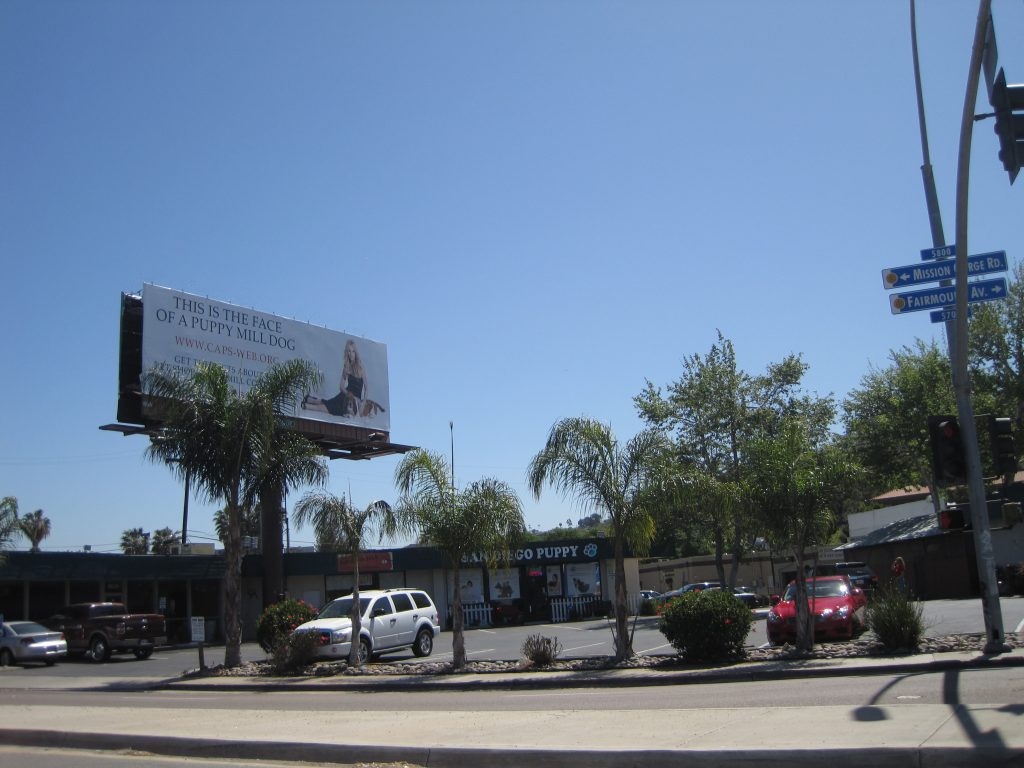 Billboard saying This is the Face of a Puppy Mill Dog above San Diego Puppy pet shop.
