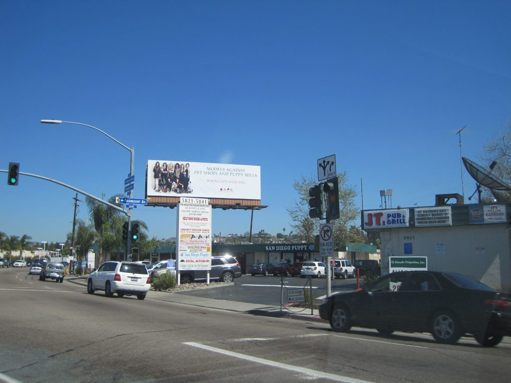 Billboard saying Models Against Pet Shops and Puppy Mills above San Diego Puppy pet shop.